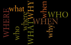 Who What When Where Why wordle